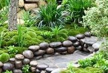 Garden Ideas / retaining walls, rock pathways, fence ideas, etc...