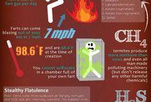 Bra att veta om kroppens hälsa
