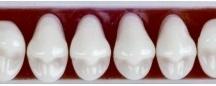 dentures supplies