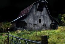 Barns / by Kelley Branstetter