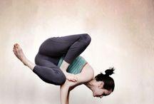 ~yogi~ / by Rachel Sosa