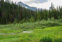 Owl Creek Pass / Western Colorado & mountain scenics