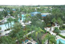 Hilton Orlando / Hilton Orlando Hotel, Florida, USA