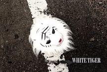 White Tiger / My action short film