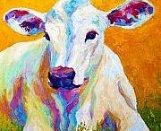Arte animales