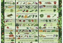 Gardening / hage