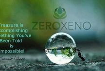 Quotes From Bonnie Penner - The Xenoestrogen Expert