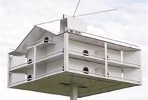 Purple Martin Houses / We have a vast selection of high quality martin houses.