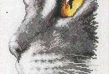 cat/s eye x