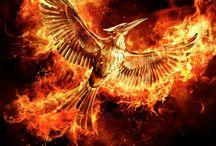 Hunger Games****