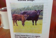Broom House Coffee Shop / our coffee shop
