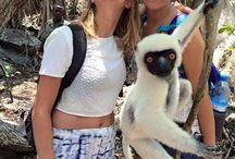 Madagascar / Wildlife Conversation, Environmental Conservation, Marine Conservation