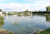 Camping and Caravan Sites for Sale