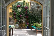 Muro vegetale / Parete con edere,surfinie e gelsomini liguri