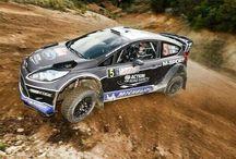WRC Fiesta