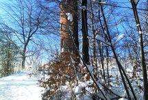 Rozhledny a větrné mlýny / Fotografie rozhleden a větrných mlýnů v Česku a Německu, pořízené při turistice a výletech.