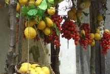fruits and vegetable strèet market