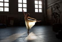 dance / by Mia Mahaffey