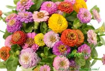wedding bouquet(ミックスカラー)