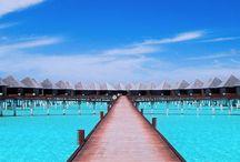 #LifesABeach / Sea, sand, sun... Paradise / by MyTravel Your Way