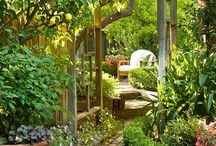 Gardening and Gardens / All about fabulous gardening Design Ideas.