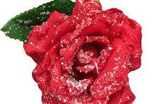 Winter roses - Home Decor