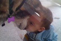 Puppy love / by Sarah Di Fruscia