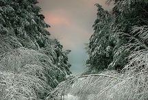 Beautiful winter / by M. Alejandra