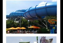 Orlando Theme Parks / Learn tips and important information about the theme parks in Orlando Florida