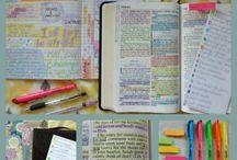Estudo da Bíblia  ✏