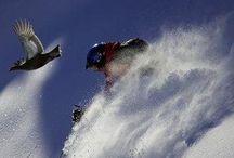 Shreddin' them slopes