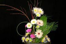 aranjamente florale corporate/business