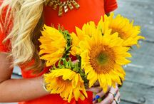 Sunflower Smiles / Gotta be my FAVE flower EVER! They're always smiling towards the sun ☀️ / by Heather Martin