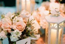 Tara's wedding / by Carrie Lemmon