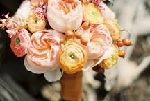 wedding flowers / by Betsy Rizzo