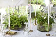 plant wedding centerpiece