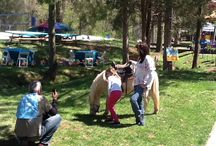 Fun With Animals / Pony, rides, petting zoo, parrots and more….