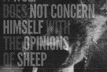 Quotes / by Brandy Lynn