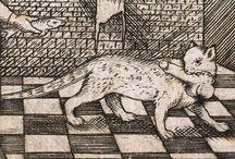 kat middeleeuwen