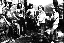Bandas chilenas