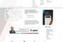 Our projects / Complex development. CMS: Drupal