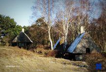 L_Scandinavia: architecture, interior, design / Скандинавия: архитектура, интерьеры, дизайн