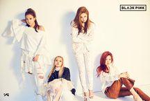BLACK PINK / BLACK PINK : YG's New Hip Hop Girl Group with the Best Visuals (Jennie, Lisa, JiSoo, Rose)