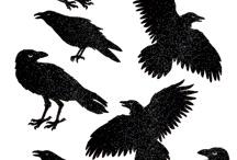 witches' tea 2015- HALLWAY / by Melissa Silk Whitten
