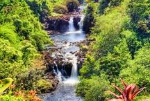 Hawaii / by Charlene Hornbaker Mulcahy