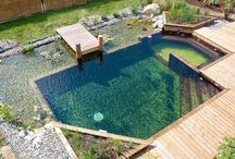 natural pools backyard