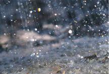 pluie          ply