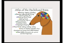 i love my dachshund / by Kari Buck