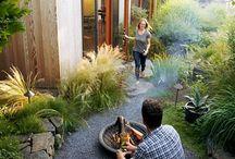 Trawy ogród