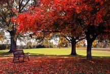 Outdoor seasons